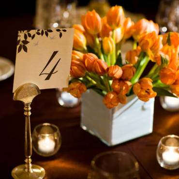 Tulips …… for your wedding